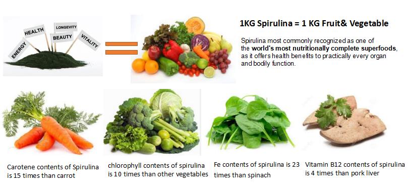 spirulina nutrition.png