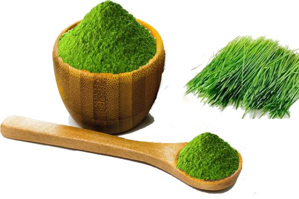 barley grass powder.png