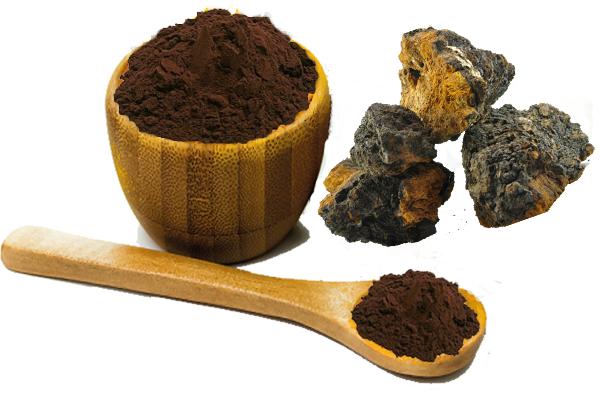 chaga mushroom powder.png