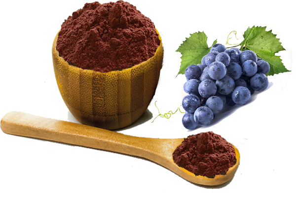 grape seed extract.png