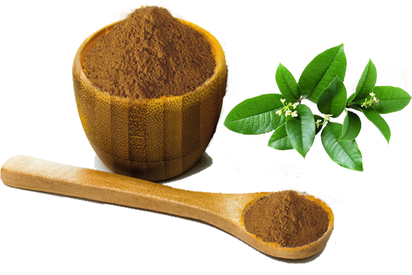 green tea extract.png