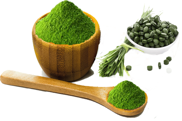 wheat grass powder .png