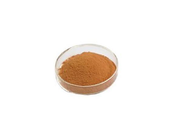 Rhodiola rosea extract 1% ~10% Salidroside / Rosavins /Rosavin